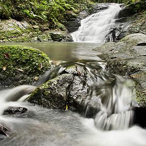roseville-house-kondalilla-falls